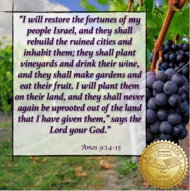 israel-in-scripture